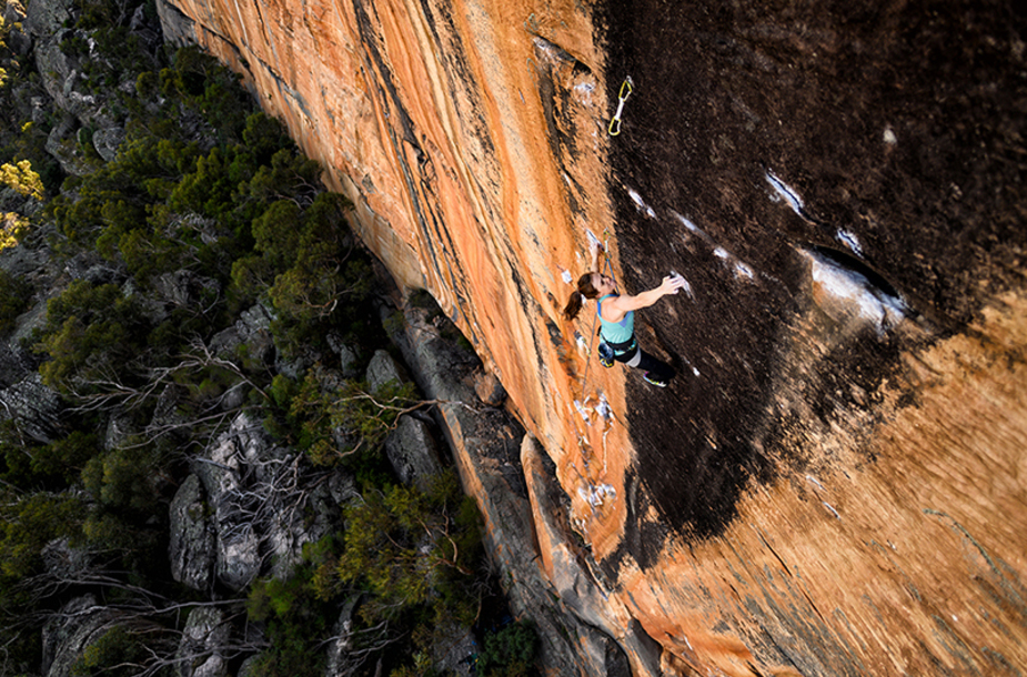 Paige claassen groove train taipan wall